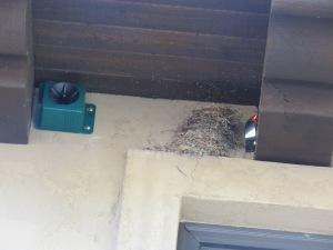 Birdx BirdXPeller (Pool House )